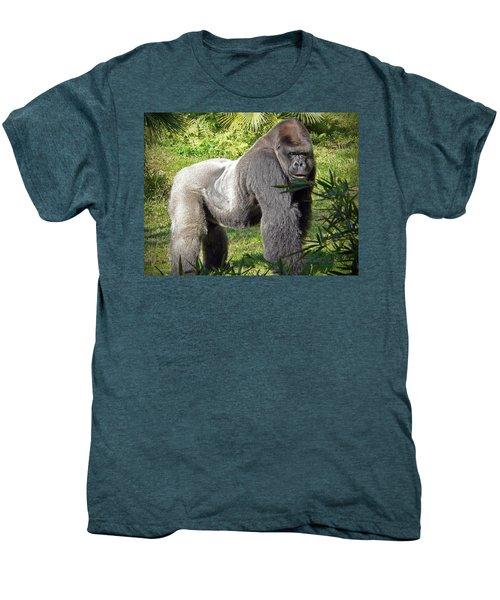 Silverback Men's Premium T-Shirt