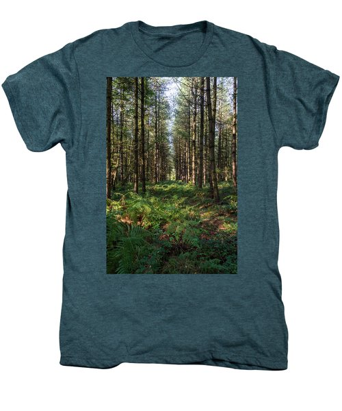 Tall Trees In Sherwood Forest Men's Premium T-Shirt