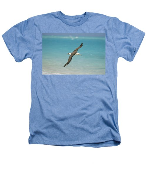 Laysan Albatross Flying Midway Atoll Heathers T-Shirt by Tui De Roy