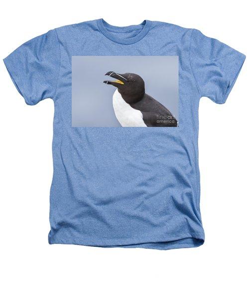 Razorbill Heathers T-Shirt