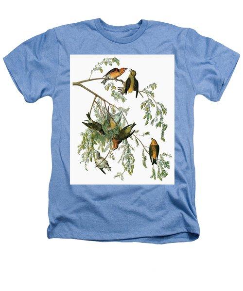 Audubon Crossbill Heathers T-Shirt