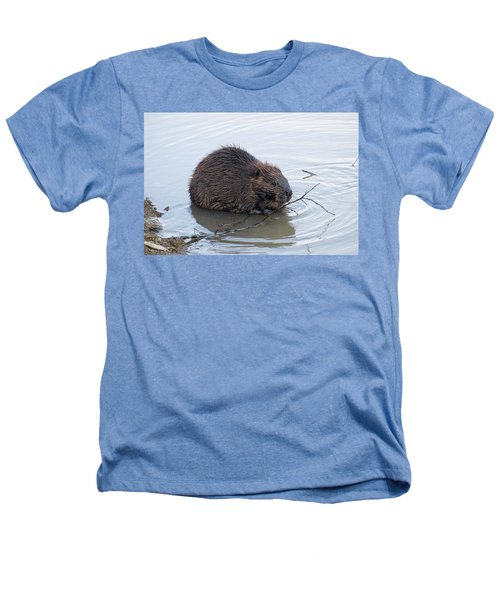 Beaver Chewing On Twig Heathers T-Shirt by Chris Flees