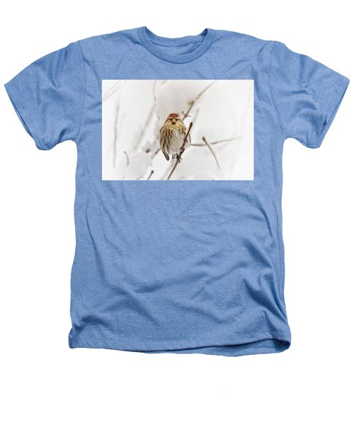 Common Redpoll Heathers T-Shirt