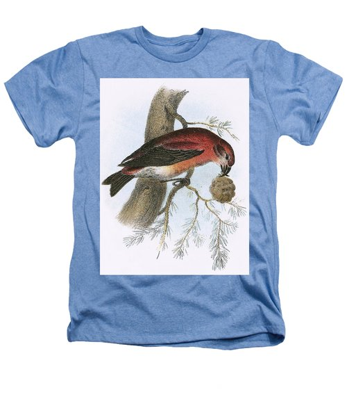 Crossbill Heathers T-Shirt by English School