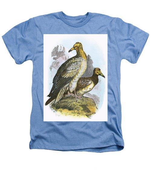 Egyptian Vulture Heathers T-Shirt