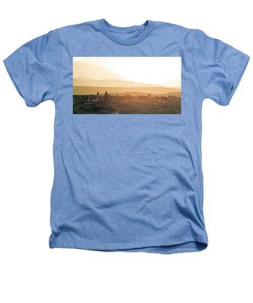 Herd Of Llamas Lama Glama In A Desert Heathers T-Shirt by Panoramic Images