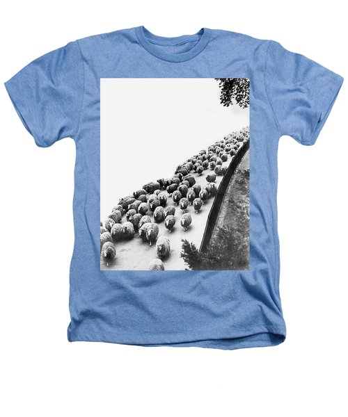 Hyde Park Sheep Flock Heathers T-Shirt by Underwood Archives