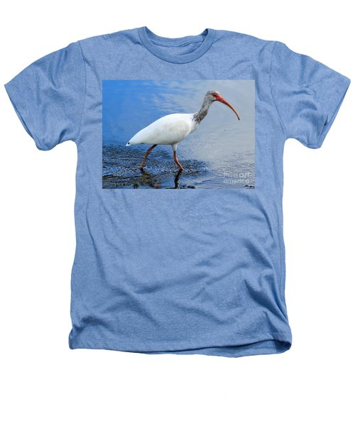 Ibis Visitor Heathers T-Shirt by Carol Groenen