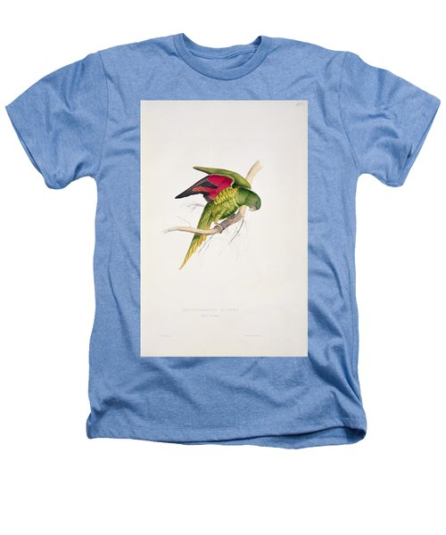 Matons Parakeet Heathers T-Shirt by Edward Lear