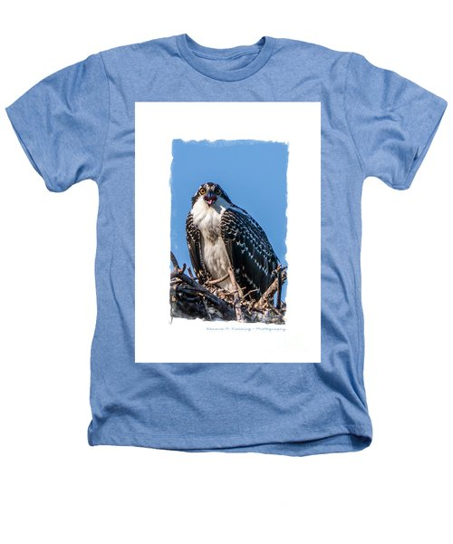 Osprey Surprise Party Card Heathers T-Shirt