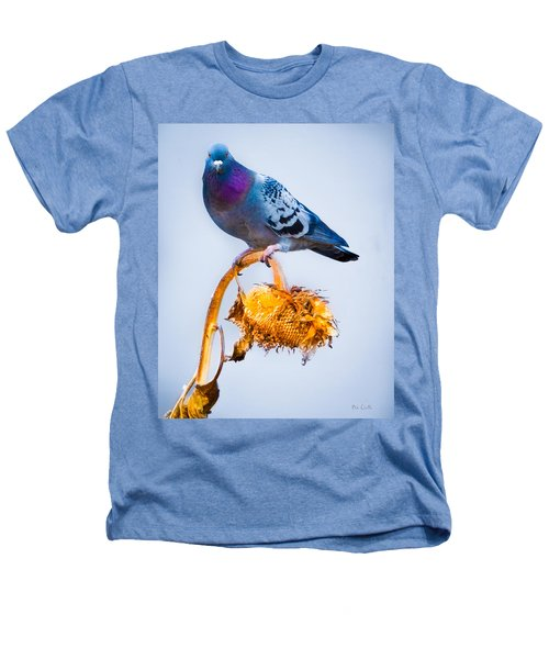 Pigeon On Sunflower Heathers T-Shirt