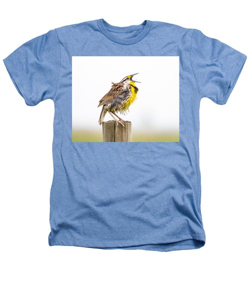 Singing Meadowlark 3rd Of 3 Heathers T-Shirt