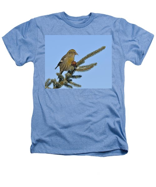 Spruce Cone Feeder Heathers T-Shirt by Tony Beck