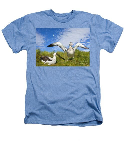 Wandering Albatross Courting  Heathers T-Shirt