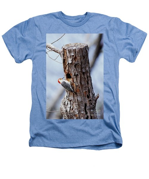 Woodpecker And Starling Fight For Nest Heathers T-Shirt by Gregory G. Dimijian