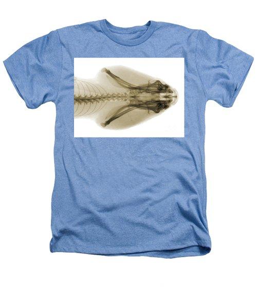 Eastern Diamondback Rattlesnake Head Heathers T-Shirt by Ted Kinsman