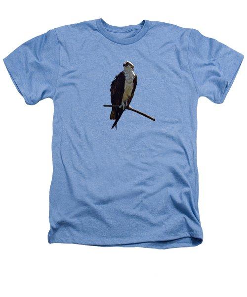 Osprey Heathers T-Shirt by Deborah Good