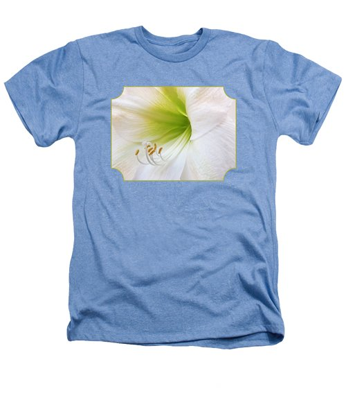 Alluring Amaryllis Heathers T-Shirt by Gill Billington