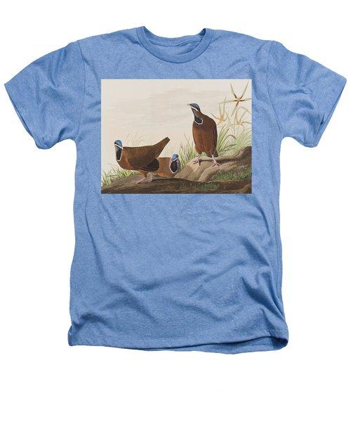 Blue Headed Pigeon Heathers T-Shirt by John James Audubon