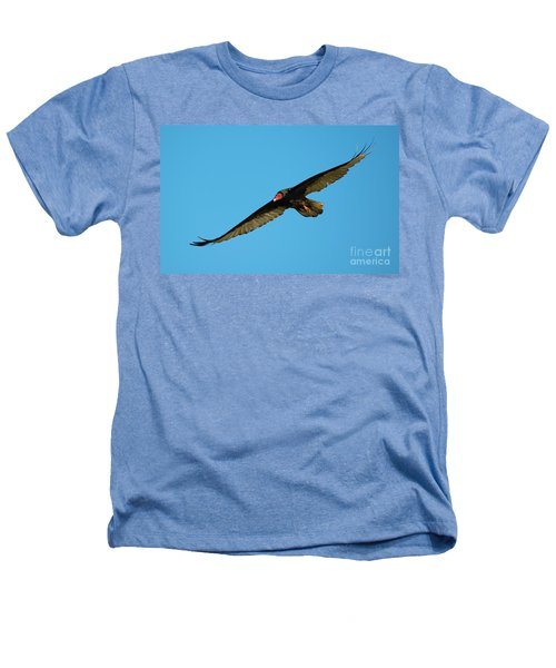 Buzzard Circling Heathers T-Shirt by Mike Dawson