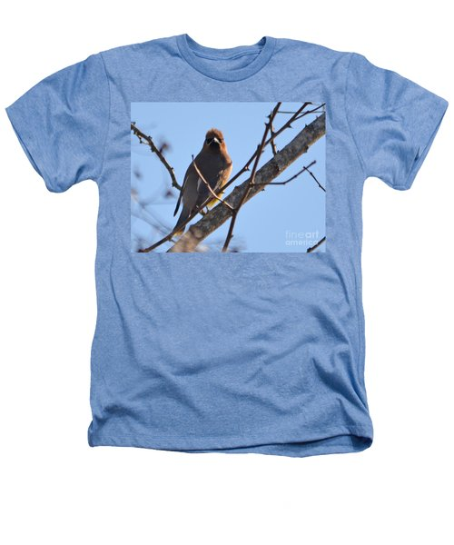 Cedar Wax Wing On The Lookout Heathers T-Shirt by Barbara Dalton