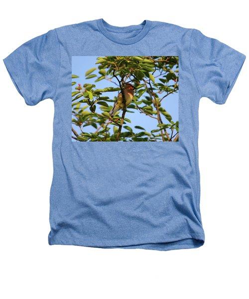 Cedar Waxwing Heathers T-Shirt
