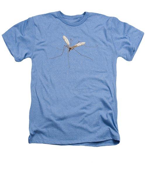 Cranefly Species Tipula Oleracea Heathers T-Shirt