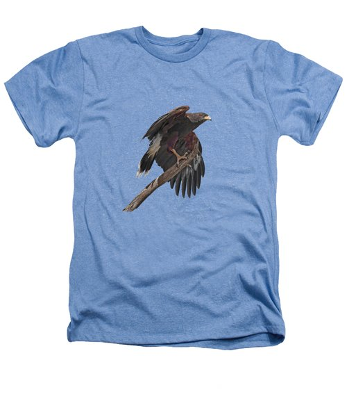 Harris Hawk - Transparent Heathers T-Shirt