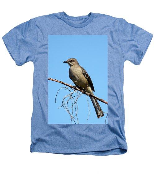 Northern Mockingbird Heathers T-Shirt by Bruce J Robinson