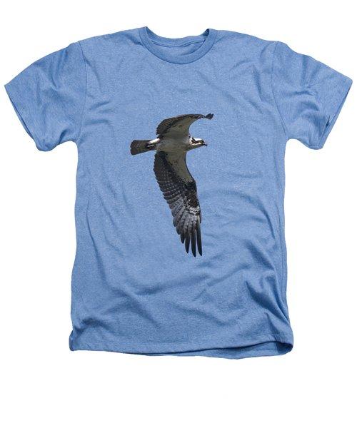 Osprey In Flight 2 Heathers T-Shirt