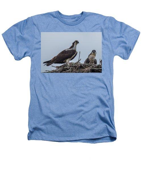 Osprey On A Nest Heathers T-Shirt by Paul Freidlund