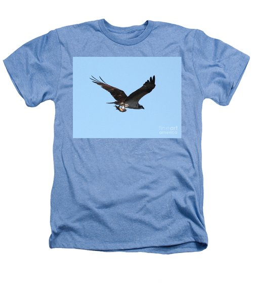 Osprey With Fish Heathers T-Shirt by Carol Groenen