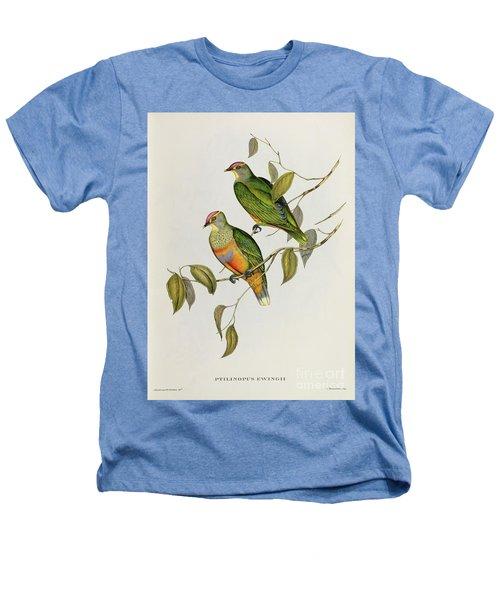Ptilinopus Ewingii Heathers T-Shirt by John Gould