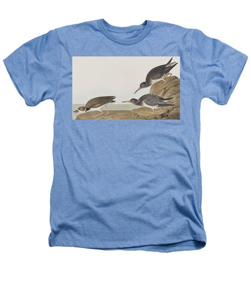 Purple Sandpiper Heathers T-Shirt by John James Audubon