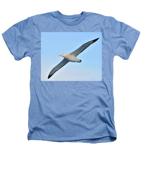 The Greatest Seabird Heathers T-Shirt by Tony Beck