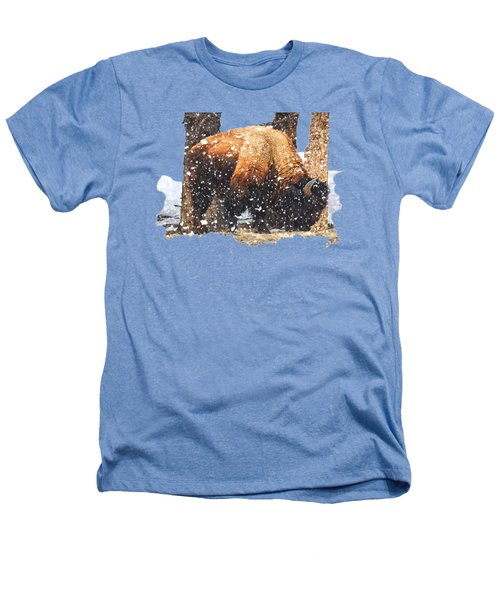 The Majestic Bison Heathers T-Shirt by Image Takers Photography LLC - Carol Haddon