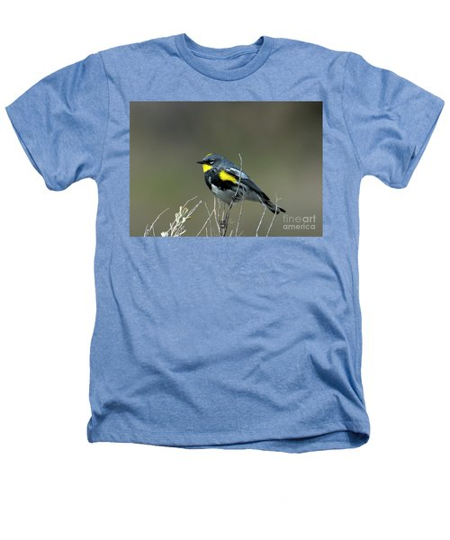 Yellow-rumped Warbler Heathers T-Shirt by Mike Dawson