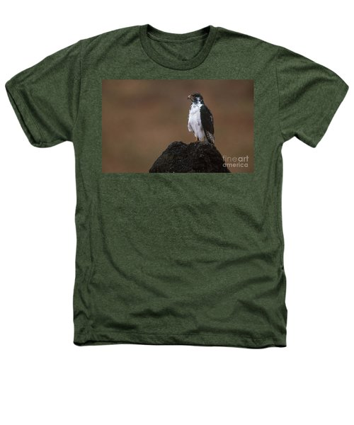 Augur Buzzard Heathers T-Shirt by Art Wolfe