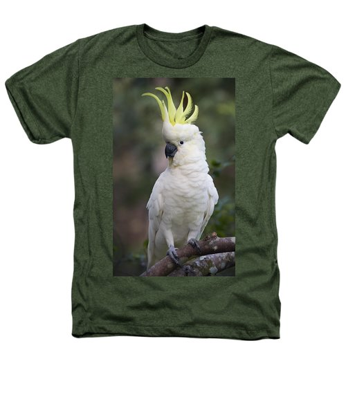 Sulphur-crested Cockatoo Displaying Heathers T-Shirt