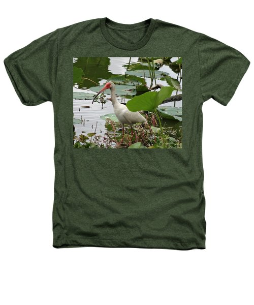 American White Ibis In Brazos Bend Heathers T-Shirt by Dan Sproul