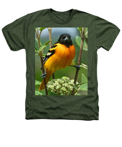 Baltimore Oriole Heathers T-Shirt