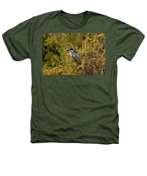Belted Kingfisher Female Heathers T-Shirt by Anthony Mercieca