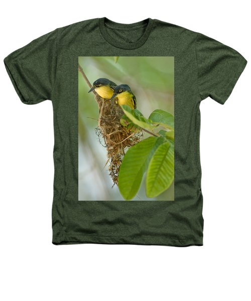 Close-up Of Two Common Tody-flycatchers Heathers T-Shirt by Panoramic Images