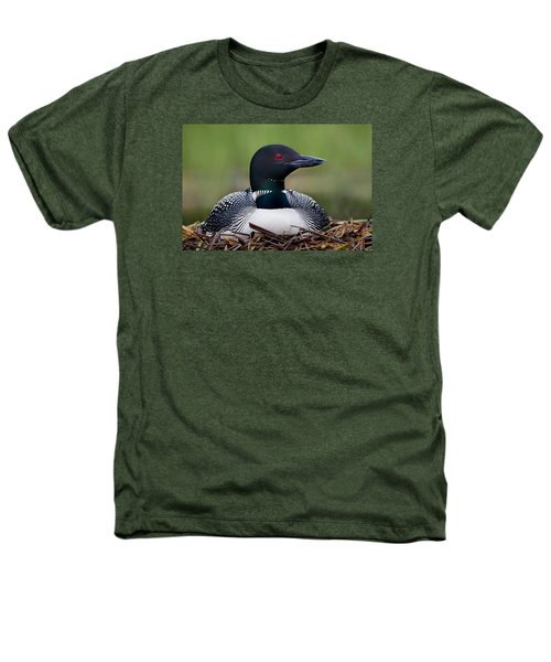 Common Loon On Nest British Columbia Heathers T-Shirt by Connor Stefanison