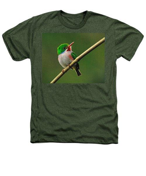 Cuban Tody Heathers T-Shirt by Tony Beck