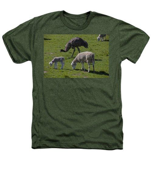 Emu And Sheep Heathers T-Shirt