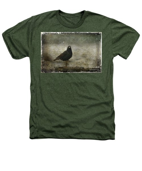 European Starling Heathers T-Shirt