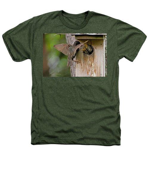 Feeding Starlings Heathers T-Shirt by Torbjorn Swenelius