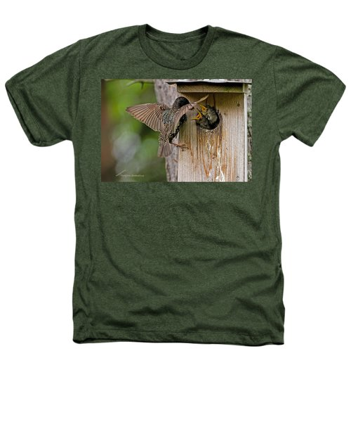 Feeding Starlings Heathers T-Shirt