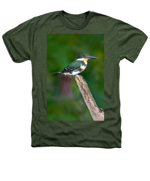 Green Kingfisher Chloroceryle Heathers T-Shirt by Panoramic Images